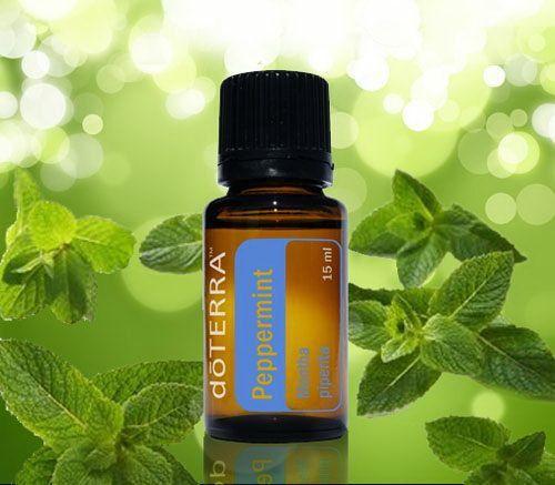 Peppermint essentiële olie